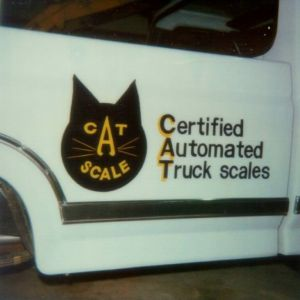 First CAT Scale Logo